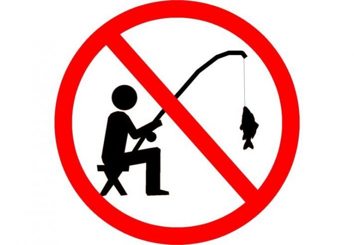 Zákaz rybolovu Lužec nad Vltavou - prodlouženo do 20.11.