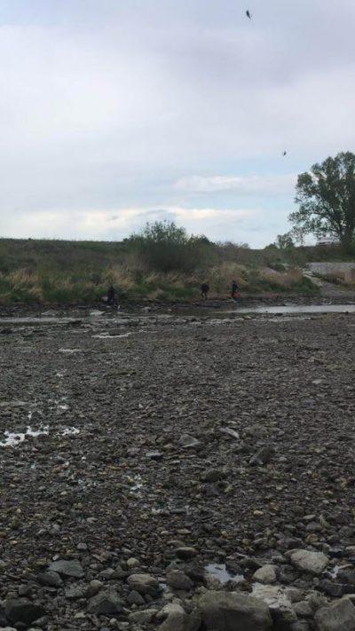Ryby na suchu, pytlák a kontroly RS