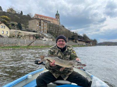 Nasazování štik, amurů a bílé ryby